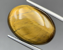 19.15 Cts Excellent Quality Tiger Eye Cabochon. Te-523