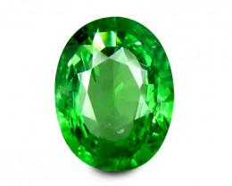 Tsavrite Garnet 1.06 Cts  Vivid Green Step cut BGC1177   From Tanzania