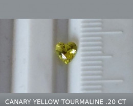 CANARY YELLOW TOURMALINE .20 CTW HEART SHAPED GEMSTONE NO RESERVE