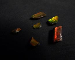 Ammolite cabochons 5pc lot 10.9 carats red fire dragon skin Alberta