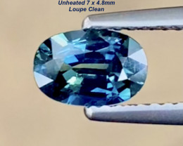 Sapphire 1.00ct - Loupe Clean / Unheated / Bi-color / 7 x 4.8mm