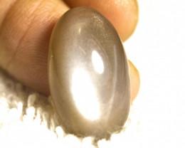 18.3 Carat 23mm Indian Moonstone Cabochon - Gorgeous