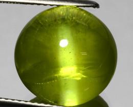 17.02 Cts Stunning Natural Qualiy  Green Chrysoberyl Cat's Eye SriLanka