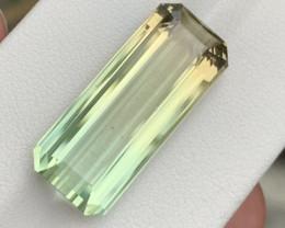 18.16 carat Natuela bi color Tourmaline.
