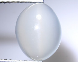 3.20Cts Cats Eye Moonstone Awesome Cats Eye MN15