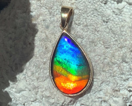 14kt yellow gold Top Quality 'One of a Kind' Full Rainbow Natural Ammolite