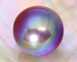 12.8mm 14.74Ct Natural Tahitian Purple Black Pearl C1501
