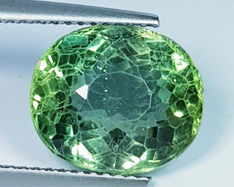 6.43 ct  Top Quality Gem  Oval Cut Top Luster Natural Green Apatite