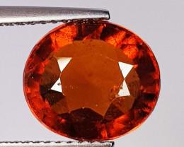 5.49 ct  AAA Grade Gem Oval Cut Natural Hessonite Garnet