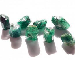 37.10 ct - Rough Natural Emerald - Brazil - 8 Units