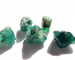 43.30 ct - Rough Natural Emerald - Brazil - 5 Units