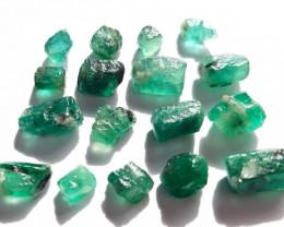 24.50 ct - Rough Natural Emerald - Brazil - 17 Units