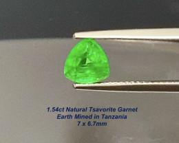 1.54ct Trillion Tsavorite Garnet - Tanzania / 7 x 6.7mm