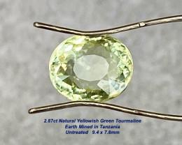 2.87ct Tourmaline -  Unheated / Yellowish Green / 9.4x7.8mm