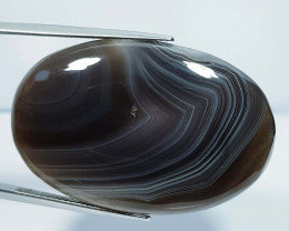 64.20 ct Natural Black Lace Agate Oval Cabochon  Gemstone