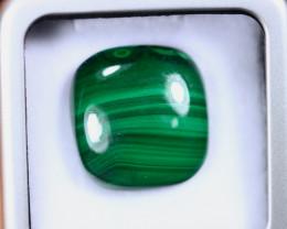 35.60cts Natural Green Malachite Cabochon / MA2082