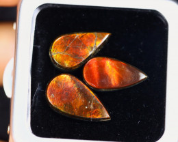 13.44cts Natural Canadian Ammolite Stones / MA2087