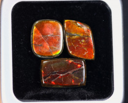 17.58cts Natural Canadian Ammolite Stones / MA2099