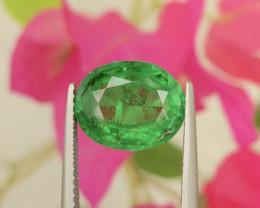 $4000~4.20Ct Natural Forest Green Tsavorite Garnet