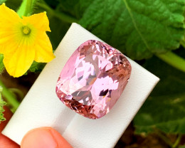 55.00 cts Natural Pink Kunzite Gemstone