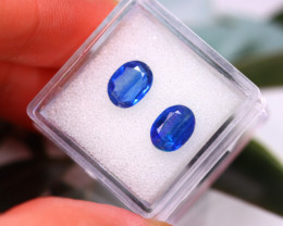 Kyanite 3.10Ct 2Pcs Natural Himalayan Royal Blue Color Kyanite E0216/A40