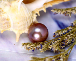 11.50mm 10.46Ct Natural Tahitian Aubergine Color Pearl EJ0303/A244