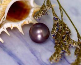 11.60mm 11.07Ct Natural Tahitian Aubergine Color Pearl EJ0304/A244