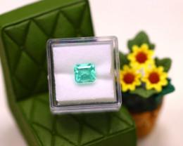 Muzo 2.02Ct Natural Vivid Green Colombian Muzo Emerald  ER610/D9