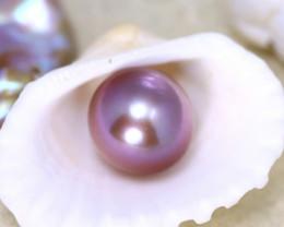 11.10mm 10.56Ct Natural Tahitian Aubergine Color Pearl E0632/A244