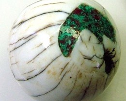 SHELL BEAD   35 CTS   AS-2153