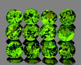 1.00 mm Round 100 pcs 0.74ct Chrome Green Diopside [VVS]