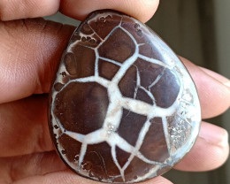 Rare Septarian Gemstone 100% NATURAL AND UNTREATED VA1049