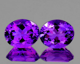 11x9 mm Oval 2 pcs 6.53cts Intense Purple Amethyst [VVS]