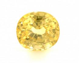2.6 CT yellow Zircon Gemstones