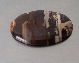 BROWN CREAM PETRIFIED WOOD AGATE CABOCHON 72.75 CTW OVAL