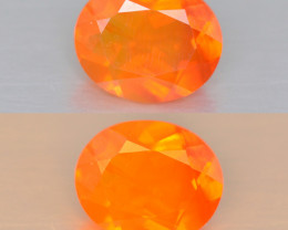 0.82 Cts  Very Rare Unheated Mexican Fire Opal Loose Gemstones