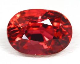 Rubellite 1.96Ct Oval Cut Natural Vivid Red Rubellite Tourmaline SC176