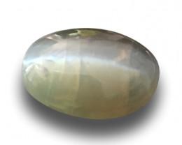 Natural Unheated Chrysoberyl Cats Eye|Loose Gemstone| Sri Lanka -