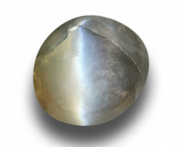Natural Unheated Chrysoberyl Cats Eye Loose Gemstone  Sri Lanka -