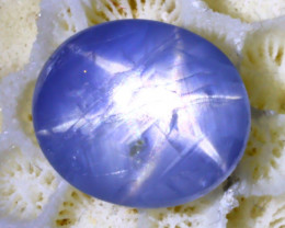 Star Sapphire 3.32Ct Natural 6 Rays Burmese Blue Star Sapphire SE298