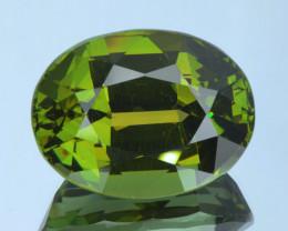 No Treat&NoHeat 34.82Ct Green Apatite Good Clarity Cut Gemstone