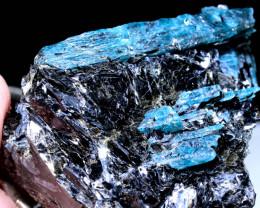 1500cts   Kyanite Crystal Harts Range, Australia  TBM-2393   TRUEBLUEMINERA