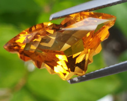 4.69Cts Amazing Natural Citrine  Butterfly Cut Loose Gemstone