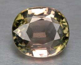Tourmaline 3.56 Cts Un Heated Bi- Color Natural Loose Gemstone