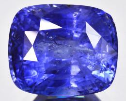 19.10 Cts Beautiful Natural Sapphire Cornflower Blue Srilanka Gem