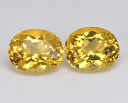 Golden Yellow Beryl 7.79 Cts Awesome Sparkling Natural Gemstone - Pair