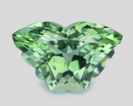 8.02Cts Amazing Natural Green Amethyst (prasiolite) Butterfly Cut