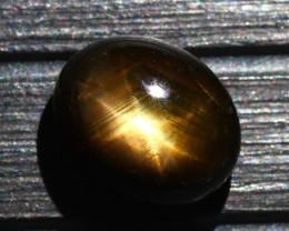 Star Sapphire 8.60Ct Natural 6 Rays Black Star Sapphire D2219/A39