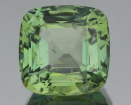 No Treat&NoHeat 22.10Ct Apatite Exquisite Quality  Cut Gemstone
