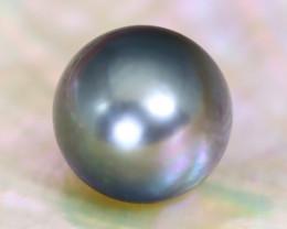 Tahitian Pearl 11.0mm Natural Tahitian Black Salt Water Pearl C1803